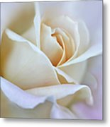 Ivory And Pink Abstract Rose Flower Metal Print