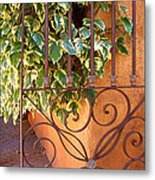 Ivy And Old Iron Gate Metal Print
