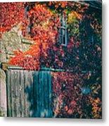 Ivy Covered Barn Metal Print