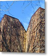 Ivy Covered Wall Metal Print