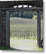 Jack London Ranch Winery Ruins 5d22132 Metal Print