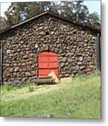 Jack London Stallion Barn 5d22101 Metal Print by Wingsdomain Art and Photography