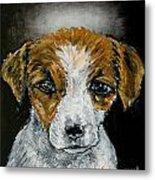 Jack Russell Terrier Angel Metal Print by Jay  Schmetz