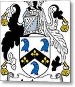 Jackson Coat Of Arms Mayo Ireland Metal Print