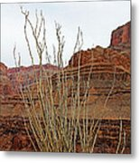 Jacob's Staff Grand Canyon Metal Print