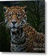 Jaguar Two Metal Print