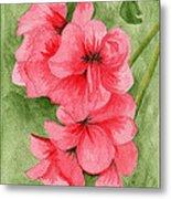Jane's Flowers Metal Print