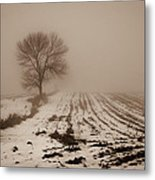 January Fog Metal Print