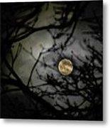 January Moon In Treetops Metal Print