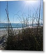 January On A Florida Beach Metal Print