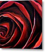 January Rose Metal Print
