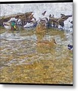 January Thaw At Riverside I Metal Print by Rosemarie E Seppala
