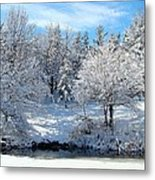 January Trees Metal Print