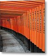 Japan, Red Columns Along Pathway Kyoto Metal Print