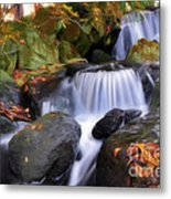 Japanese Garden In Wroclaw Poland Metal Print
