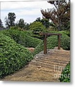 Japanese Garden Of Water And Fragrance 3 Metal Print