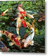 Japanese Koi Fish Pond Metal Print