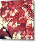 Japanese Maple Leaves - Vintage Metal Print
