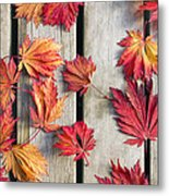 Japanese Maple Tree Leaves On Wood Deck Metal Print by David Gn
