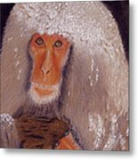 Japanese Snow Monkey Metal Print by David Hawkes