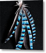 Jay Feather 2 Without Text Metal Print