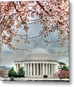 Jefferson Blossoms Metal Print