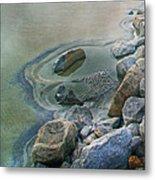 Jekyll Island Tidal Pool Metal Print