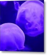 Jelly One Metal Print