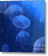 Jellyfish   #0547 Metal Print