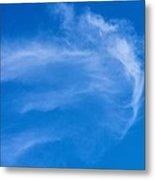 Jellyfish Cloud Metal Print