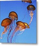 Jellyfish Swarm Metal Print