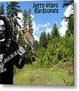 Jerry Plays Birdsongs Metal Print