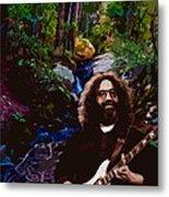 Jerry's Mountain Music 7 Metal Print