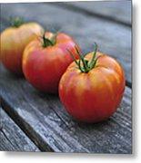 Jersey Tomatoes  Metal Print