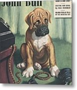 John Bull 1949 1940s Uk Dogs  Magazines Metal Print by The Advertising Archives