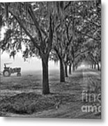 John Deer Tractor And The Avenue Of Oaks Metal Print by Scott Hansen
