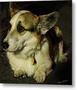 Johnny Waits Patiently Metal Print