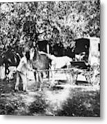 Johnston Horse Wagon Metal Print