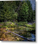 Jordan Headwaters In The Moonlight Metal Print by MJ Olsen