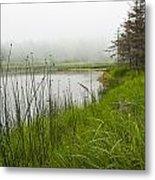 Jordan Pond In Acadia National Park Metal Print