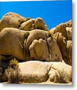 Joshua Tree 29 Metal Print