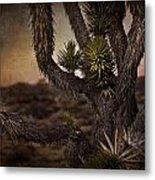 Joshua Tree In Mojave National Preserve Metal Print