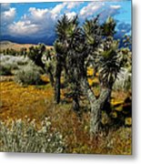 Joshuas And Sage Metal Print