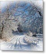 Journey Into Winter Metal Print by Teresa Schomig