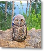 Journey Of Burrowing Owl Metal Print