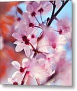 Joy Of Spring. Pink Spring In Amsterdam Metal Print