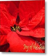 Joy Of The Season Metal Print