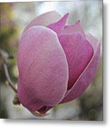 Joyful Pink Magnolia Metal Print