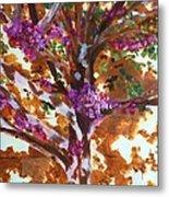 Judas Tree Jerusalem Metal Print