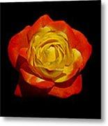Judy Garland Rose Metal Print